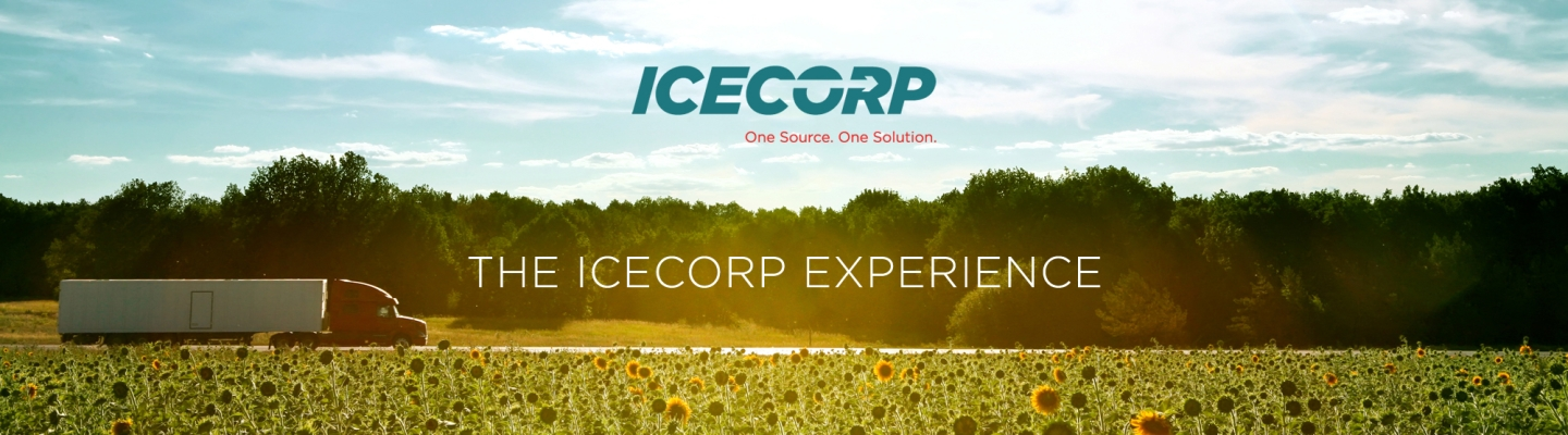 The Icecorp Experience